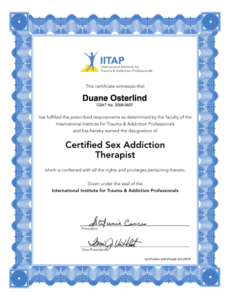 certified sex addiction therapist chicago in Louisiana